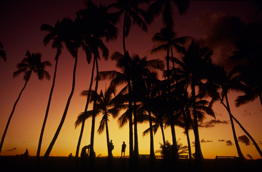 studera hawaii språkresa och språkkurser