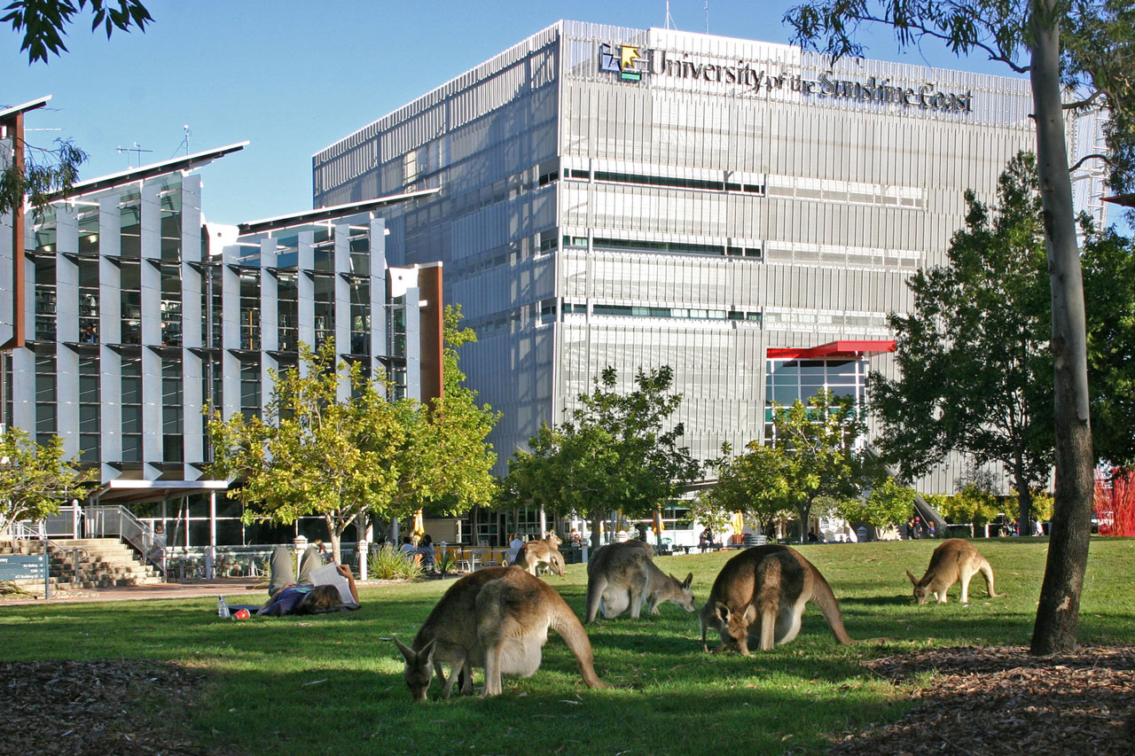 university-of-the-sunshine-coast-australia