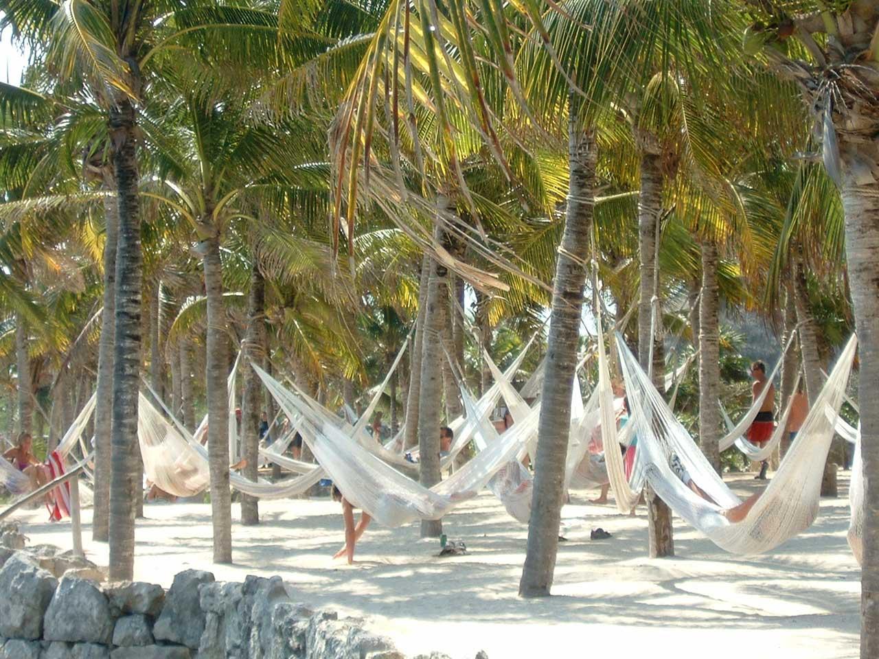 studera-spanska-playa-del-carmen