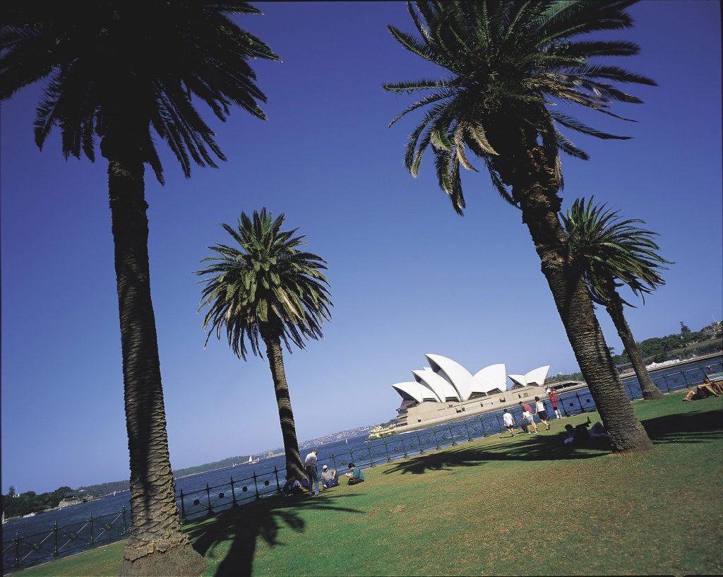 Studera i Sydney - Botanical Gardens