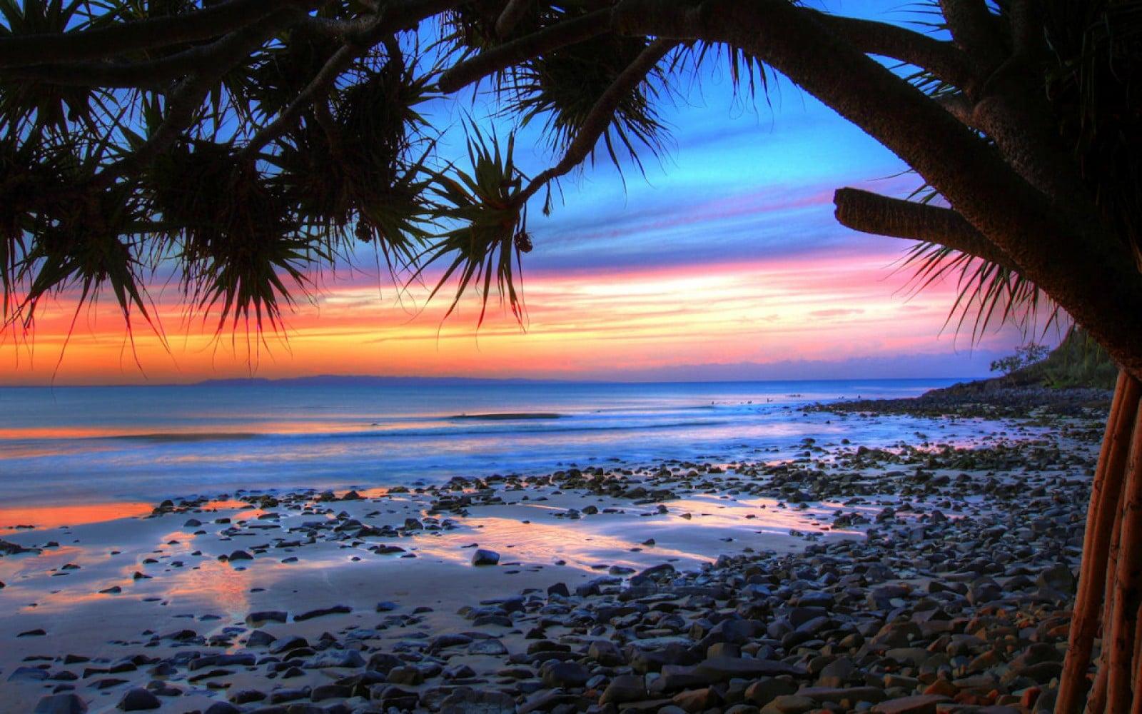 plugga i australien på sunshine coast och brisbane