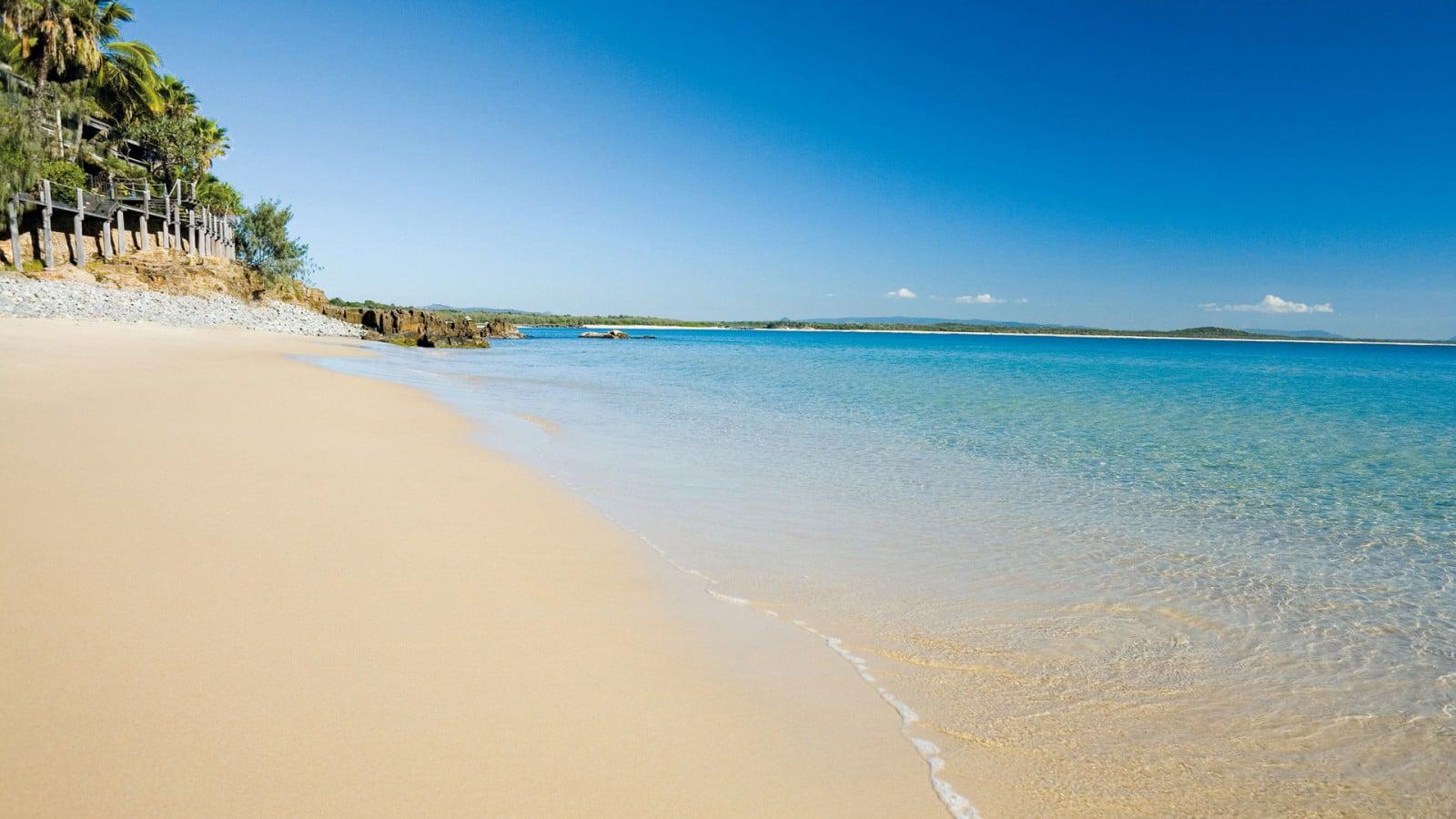 plugga australien sunshine coast