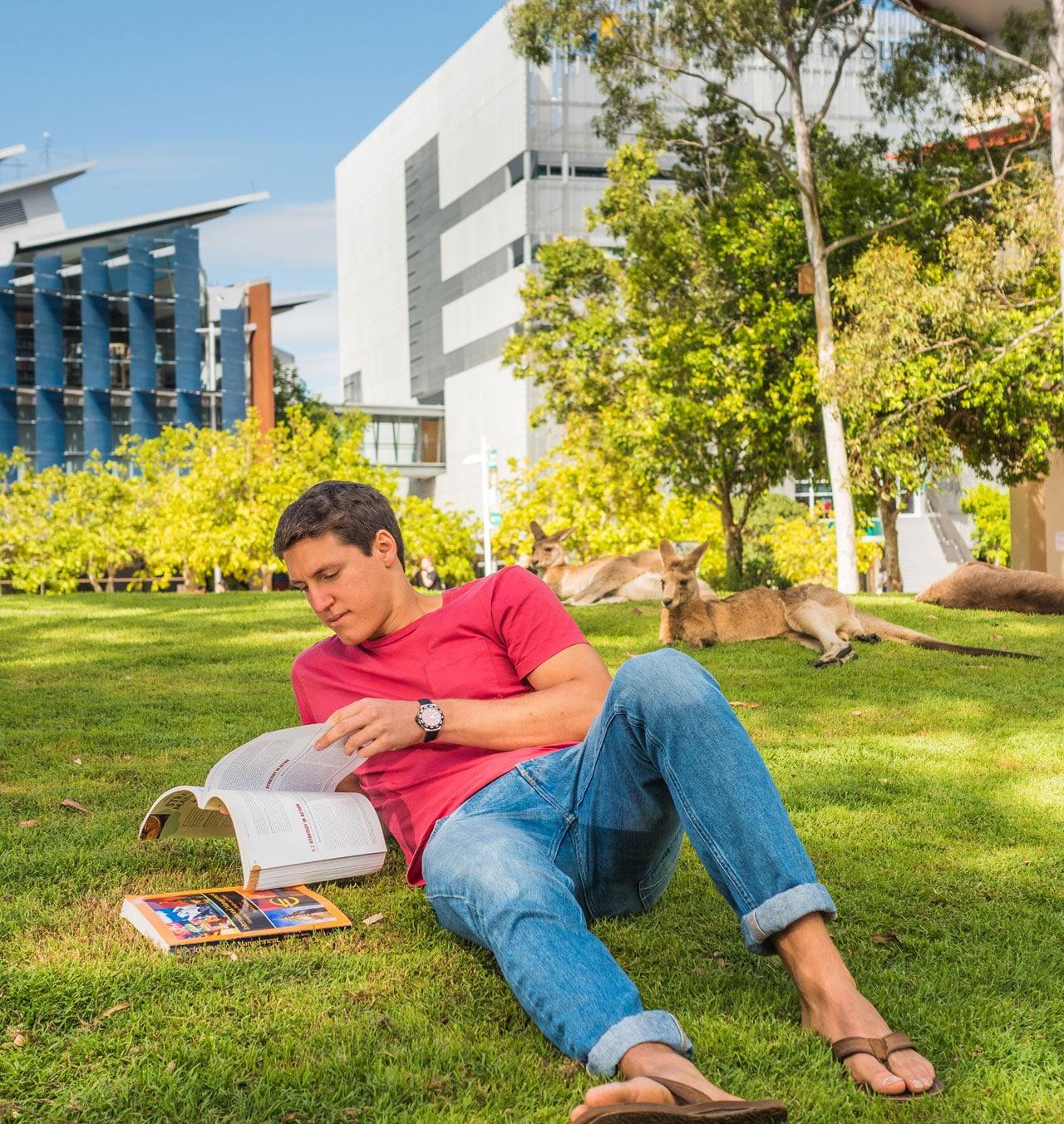 studera i australien