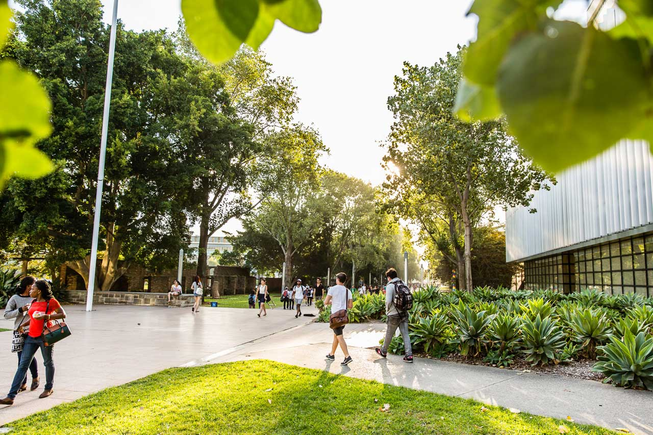 university of new south wales australien