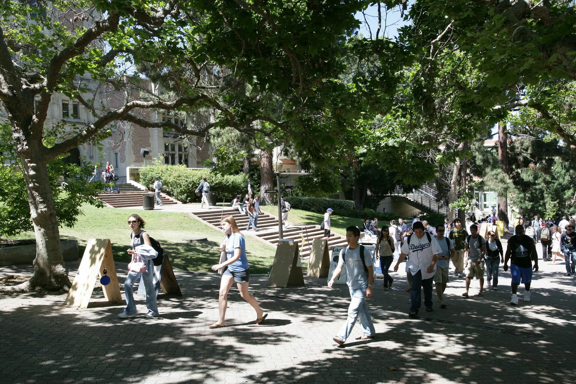 ucla university of los angeles